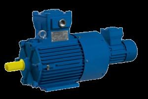 Взрывобезопасные трехфазные асинхронные двигатели с короткозамкнутым ротором серии—ASA-VF с принудительной вентиляцией (IC416)